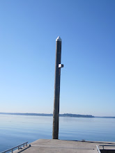 Photo: There were perhaps a half dozen purple martin nest boxes on  the poles on this large pier