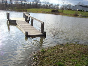 Photo: After a lot of rain.  This is as high as the water will get as it's up to the drain over at he levy.  Need to extend the dock a bit I guess...or build up the land leading to the dock.