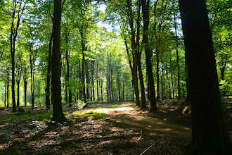 Photo: Puur Natuur in Gelderland