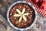 Caramel Apple Walnut Brownie Pie