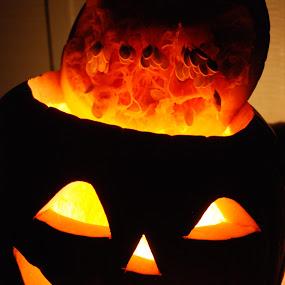Jack by Barb Moore - Public Holidays Halloween ( pwc77:pumpkins, pumpkin, carving, light, halloween, pumpkins, color, colors, landscape, portrait, object, filter forge, silhouette, carved )
