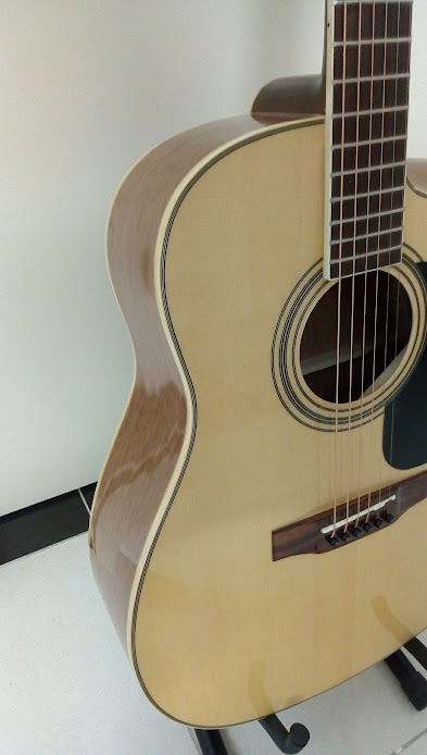 Acoustic guitar DJ260