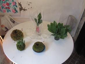 Photo: plusieurs kokedamas et création dans verre avec muguets