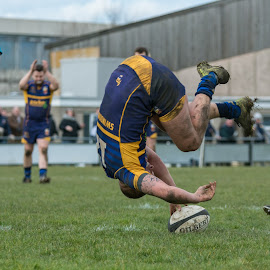 It's a try... by James Booth - Sports & Fitness Rugby ( union, sports, sport, team, rugby )