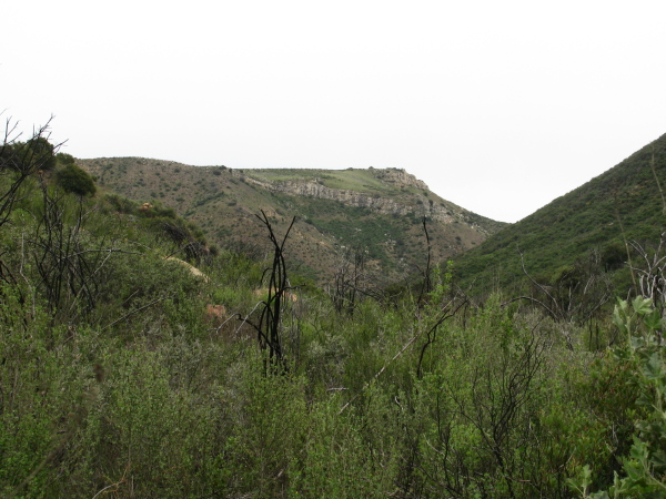 Some of the canyon.