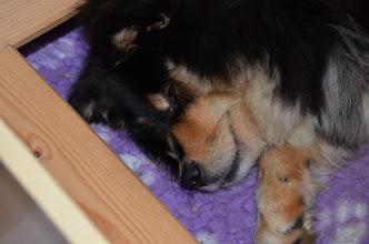 Photo: En træt og dygtig Ilo pige, hun har været ude et par gange og er også kommet ud i køkkenet til mig for at få lidt at spise.
