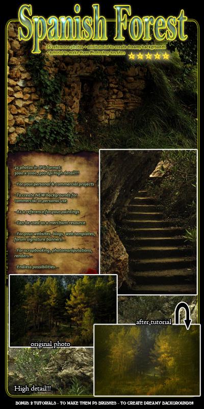 spanish forest photos photo resource stock photo