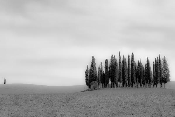 Alone! di servi_marco