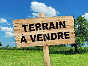 terrain à Saint-Viâtre (41)