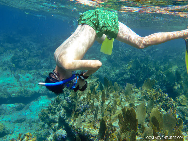 Snorkeling in Turks and Caicos Islands.