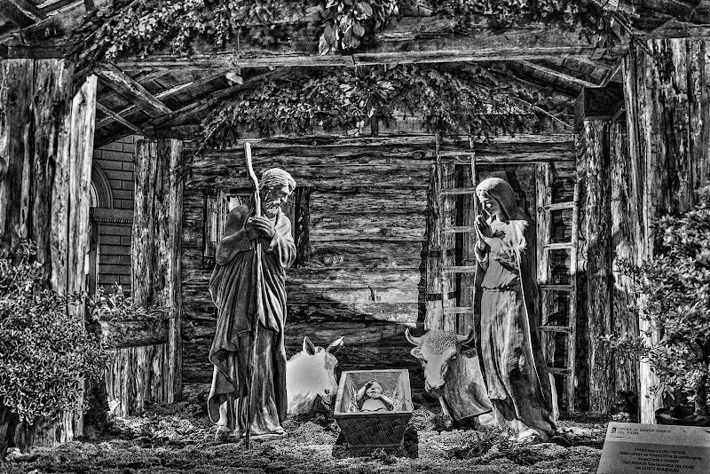 Presepe in B&W di marvig51
