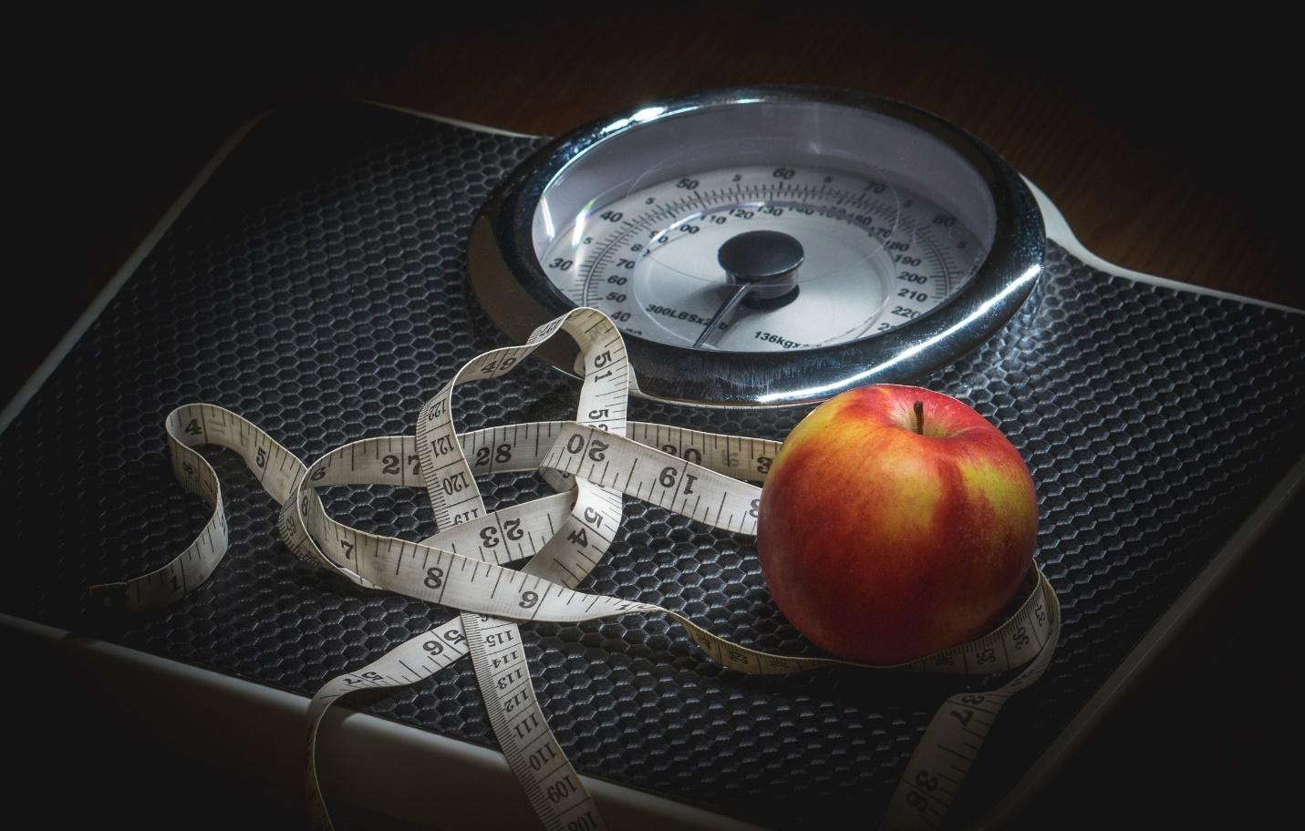 8 Diets for an Effective Weight Loss -  Weight watchers diet