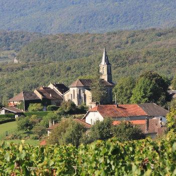 photo de Saint Théodule