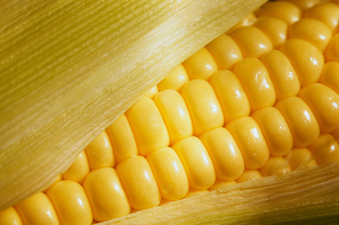 Food of the week: corn