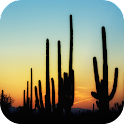 Cactus Wallpapers icon