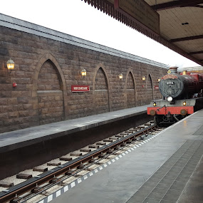 Railway  by Riddhima Chandra - Transportation Trains ( railway, harry potter, tracks, train, monorail )