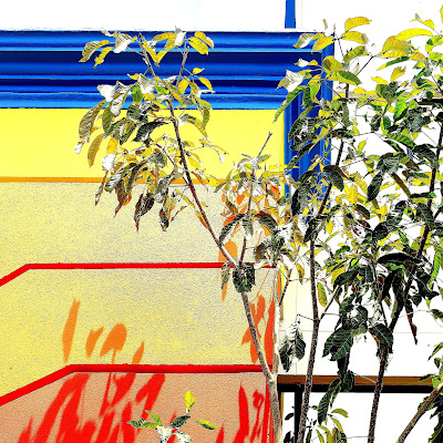 Yellows lines and architecture  di boletusedulis