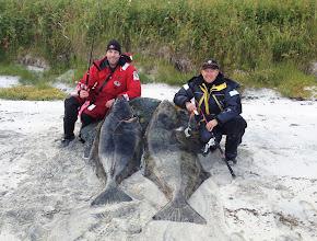Photo: Team Småsej med enorma hälleflundror http://norgehavsfiske.se/tromso_fiskecamp