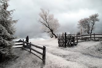 Photo: Never-land