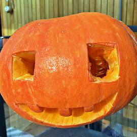 Dovleac by Dobrin Anca - Public Holidays Halloween ( pumpkin, green, brittany, table, garden )