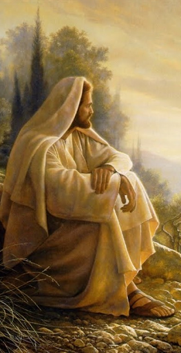 The Bible Images screenshot 19