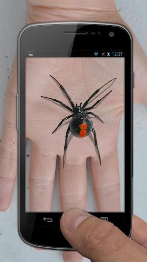 蜘蛛手有趣的笑话