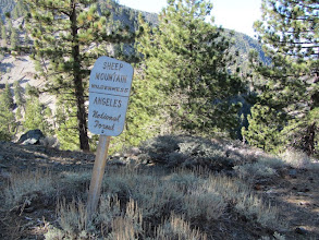 Photo: 10:03 AM – Begin hike under beautiful sunny skies with a chilly breeze. The trail enters Sheep Mountain Wilderness.