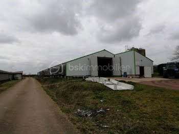 terrain à Saint-Allouestre (56)