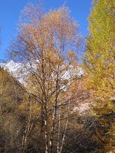 Photo: Khodzhokelen, near sacred grotto, autumn