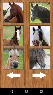 Funny Horse Farm Sounds - náhled