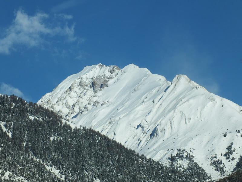 Le Alpi di biloscurio
