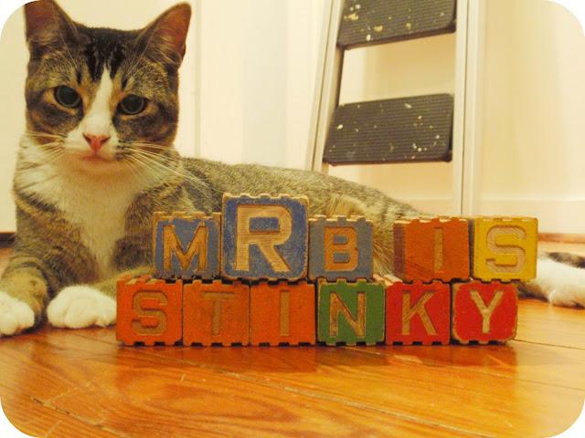 Mr. B is Stinky