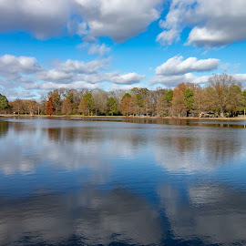 Tranquility by Ed Stines - Landscapes Waterscapes ( usa, wilson, reflections, nature, nc, plants, woods, river, water, trees, landscape, park )
