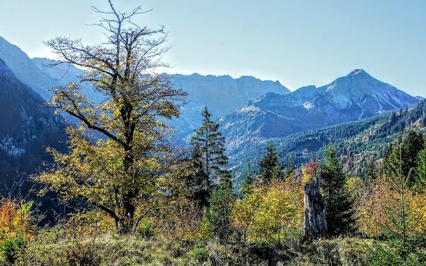 Retterschwangertal Nebelhorn Entschenkopf Allgäu