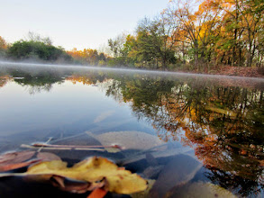 Photo: Leaves and mist on an autumn pond at Eastwood Park in Dayton, Ohio.