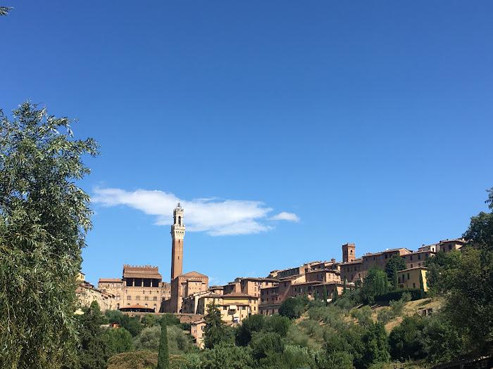 Palazzo Pubblico and Torre del Mangia, view from Orto de'Pecci