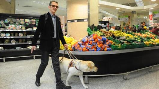 Diez perros guía acompañan a personas ciegas de Almería durante el confinamiento