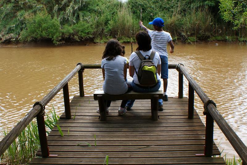 Rio Mira em Odemira