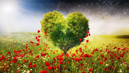 Heart Tree Live Wallpaper