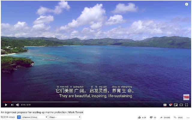 Dualsub – 让 Youtube 显示双语字幕,支持 Chrome、Firefox