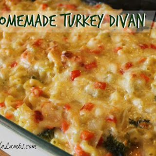 Homemade Turkey Divan