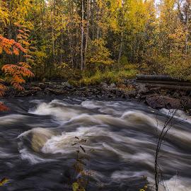 August in Hossa Finland by Torolf Vikström - Uncategorized All Uncategorized ( waves, forest, waterscape, autumn, water )
