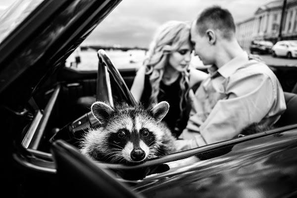 Свадебный фотограф Татьяна Малышева (tabby). Фотография от 03.08.2017