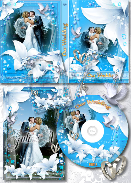 dvd cover psd template. 3 PSD, 4 PNG | 3000x4500,