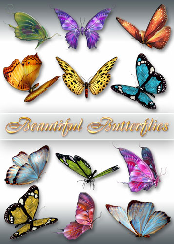 Клипарт PNG - Красивые бабочки