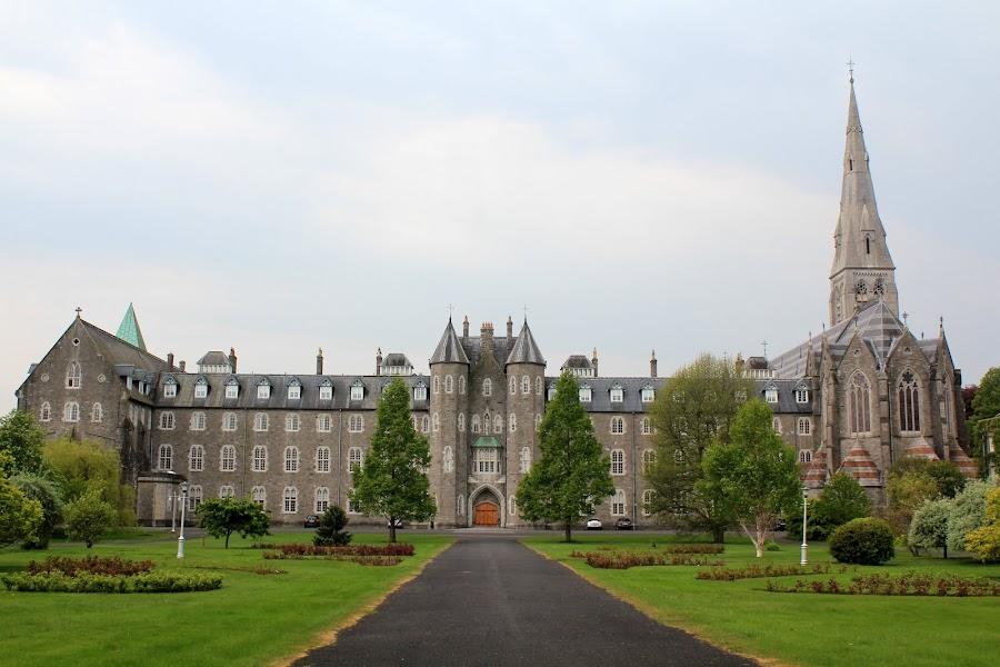 Колледж st Patrick college
