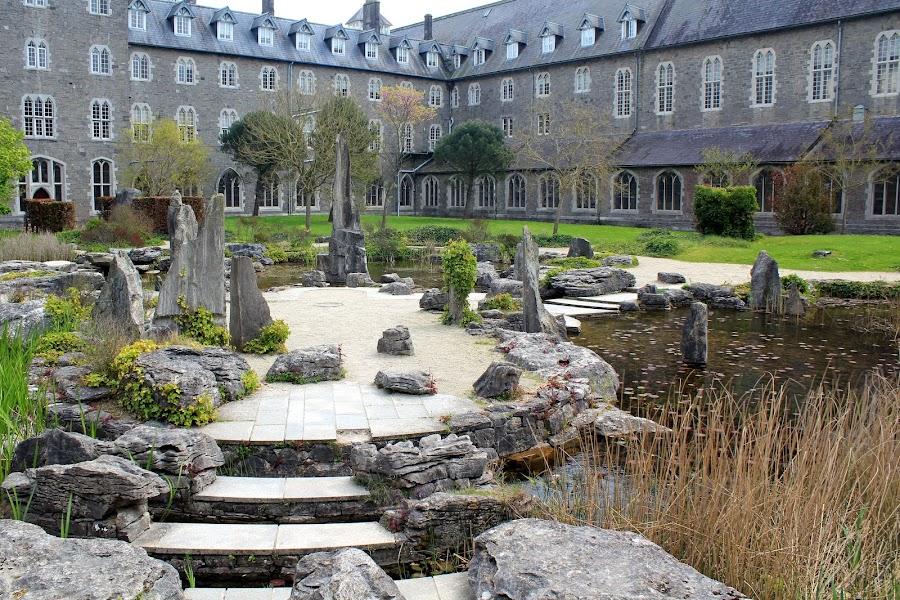 Майнут колледж Ирландия