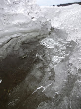 Photo: In the crack between the ice shelf and shore. You can see the bottom through the thin ice.