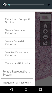 AnatLab Histology- screenshot thumbnail