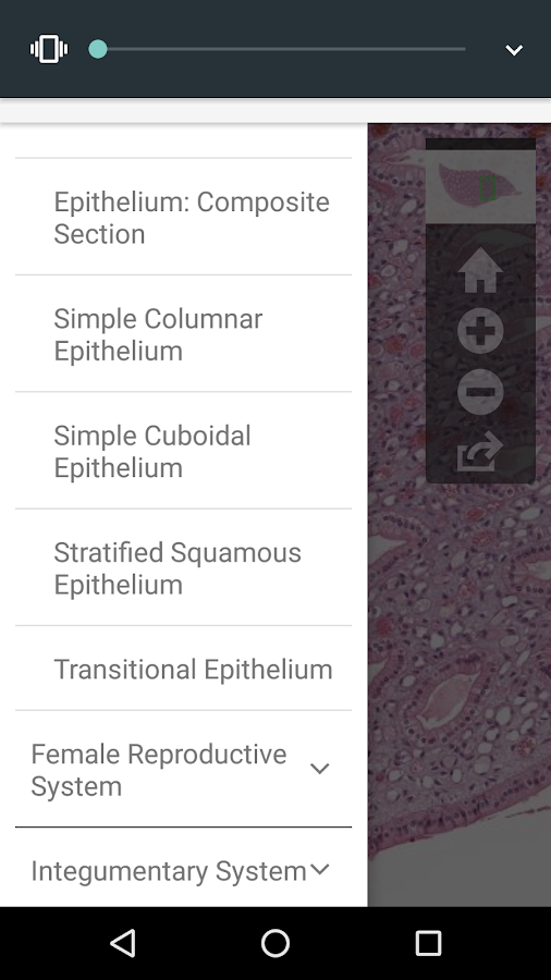 AnatLab Histology- screenshot